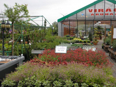 Növénycentrum