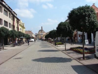 Belvárosi Virágút 2013.