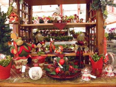 Karácsonyi hangulat a Dzsungelországban