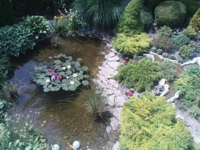 Gartengestaltung, Garten in Ungarn